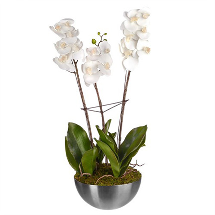 ARTIFICIAL PHAELAENOPSIS ORCHID 3 BRANCHES 85CM