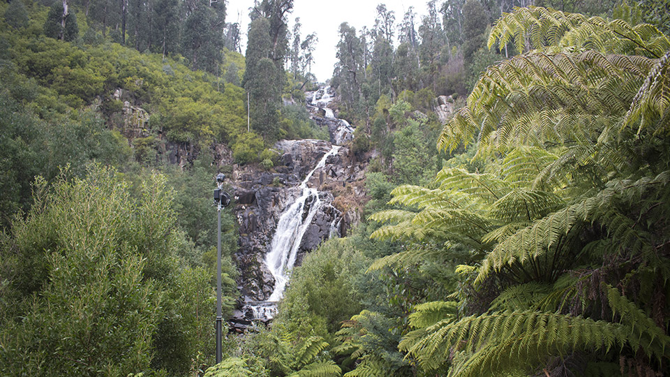 Steavensons Falls in Marysville