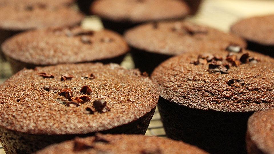 Choc coconut cupcakes
