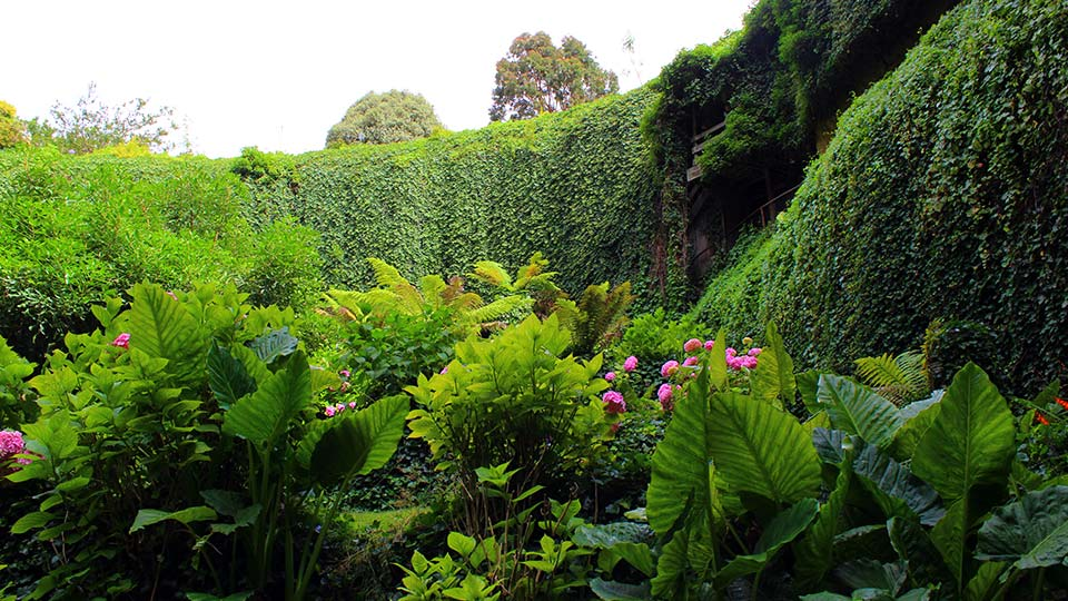 Things to do in Mount Gambier: Umpherston Sinkhole